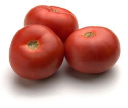 Tomato processing equipment